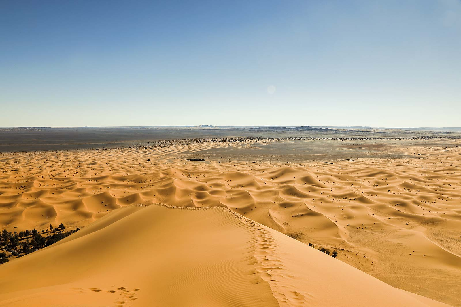 On top of the highest sand dune of the Erg Chebbi. What a view?!