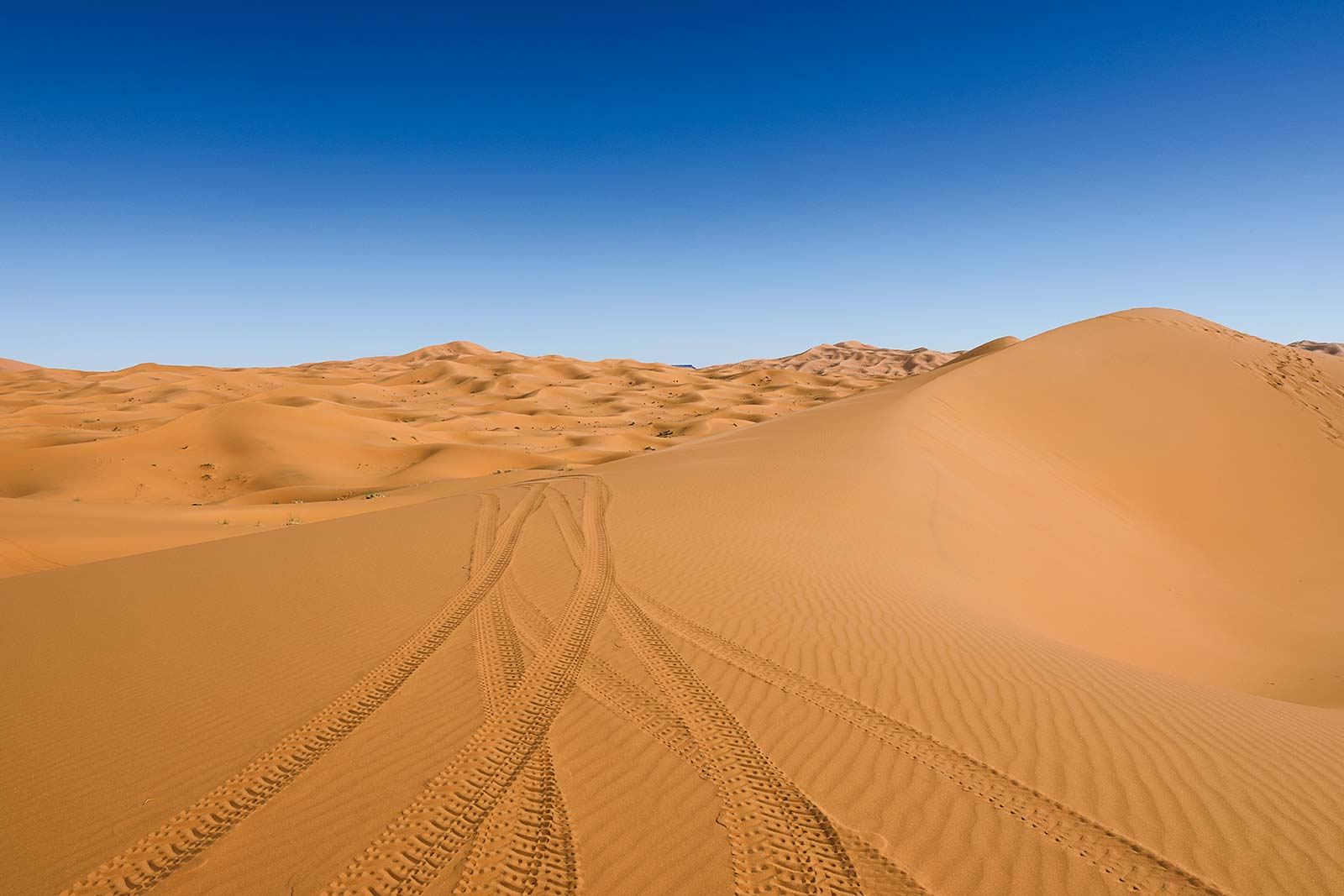 The dunes of Erg Chebbi reach a height of up to 150 meters in places and altogether it spans an area of 50 kilometers from north to south and up to 5–10 kilometers from east to west.
