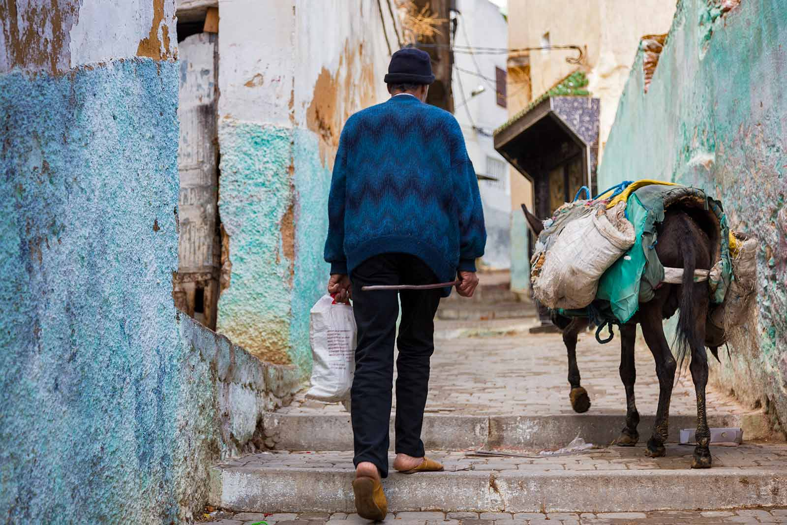 Donkeys can be seen everywhere in Moulay Idriss. They're used to transport everything from people, shopping, luggage, beds, fridges, tables due to the hilly nature of the town.