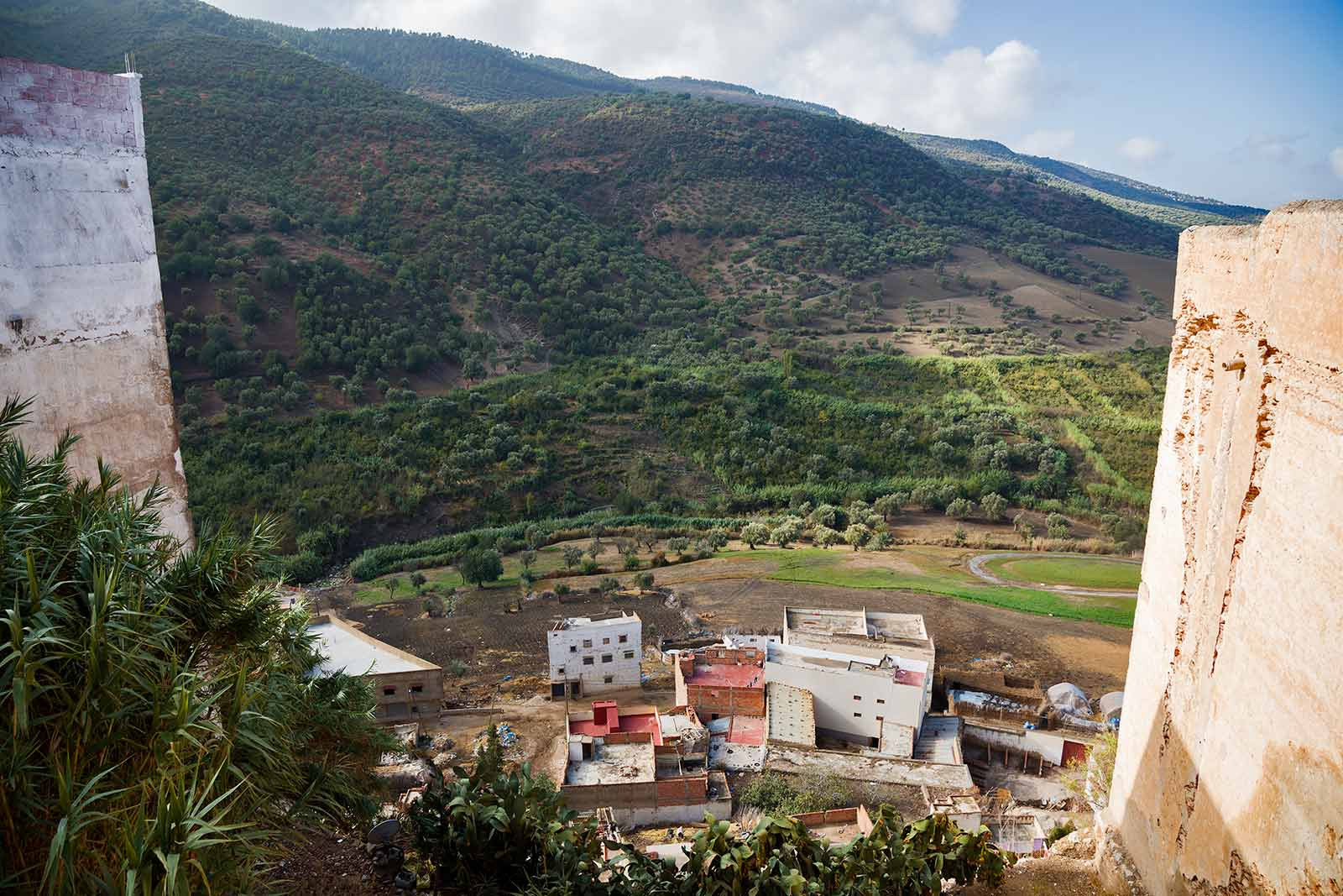 One reason the Romans chose Moulay Idriss was for its potential for making olive oil, which is today the town's primary product.